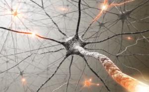 chanvre et sclerose en plaque
